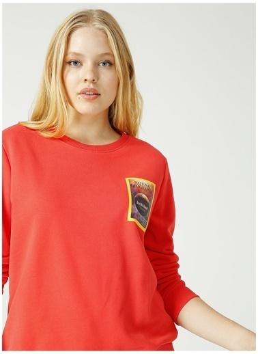 National Geographic Sweatshirt Pembe